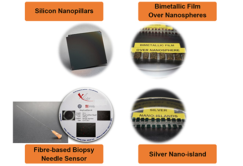 Examples of SERS-based substrate, optical fibre and assay