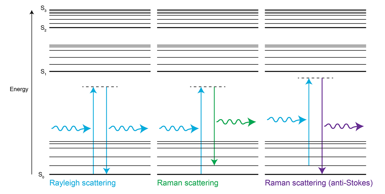 Raman Spectroscopy In More Detail Electronic Schematic Diagrams Rayleigh And Scattering Energy Diagram S0 S1 S2 Are Levels With Higher Vibrational